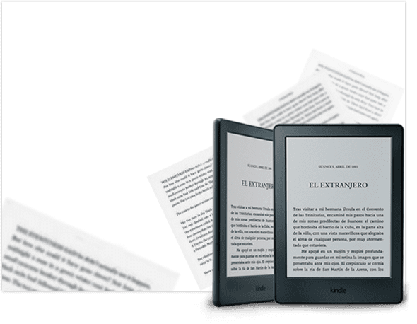 2 E-Reader<br /> <strong>Kindle</strong>