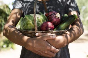 Alimentación orgánica una puerta al debate