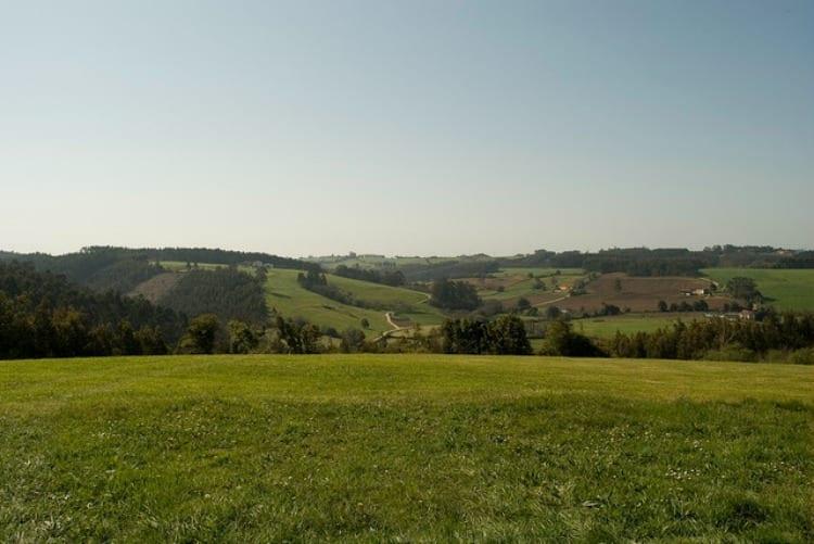 Central Lechera Asturiana, la marca láctea que mejor conecta con los españoles