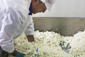 Central Lechera Asturiana abre las puertas de su factoría a través de webcams