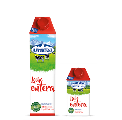 duo brick leche entera tradicional
